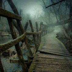 Creepy Backgrounds, Creepy Woods, Dark Wings, Forest Pictures, World Of Darkness, Realistic Paintings, Abandoned Places, Nature Photos, Beautiful World