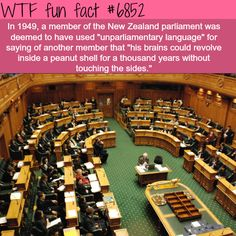 The best insults in the world - WTF fun fact