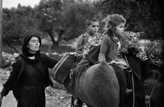"""Constantine """"Costa"""" Manos (born 1934 in South Carolina): Crete. Going home from the fields. """"A Greek Portfolio"""". Karpathos, Most Famous Photographers, Great Photographers, Greece Pictures, Greece Photography, Susan Sontag, Creta, Photographer Portfolio, Magnum Photos"""