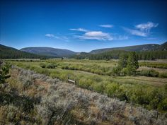 Wise River valley, Pioneer Mountains, Montana