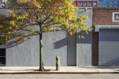Joseph Beuys, 7000 Oaks (1982) Documentation