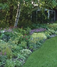 A Strategy for a Long Border | Fine Gardening. This article gives pictures of several strategies, such as, repeat plants, repeat colors, create vignettes...