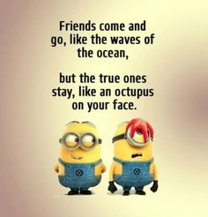 If you are search for Top Best Funny Minions Quotes and Pictures you've come to the right place. We have 17 images about Top Best Funny Minions Quotes and Pictures. Friends Come And Go, Crazy Friends, Close Friends, Funny Minion Memes, Minions Quotes, Minion Humor, Funny Humor, Minion Sayings, Minion Stuff