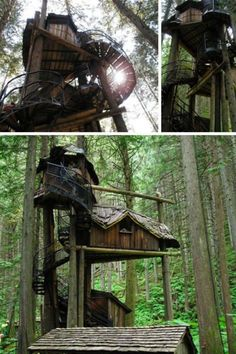 I so want a tree house like one of these....