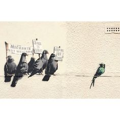 40 Powerful Photos Show Why Banksy Is the Spokesman of Our Generation - MicCan't we just all get along?