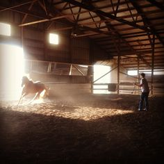Dust.  #cowboy #western #horse #ride #barn #farm #equine #equestrian #hippotherapy #therapeutic riding #pony #quarter horse #thoroughbred by birddog10, via Flickr