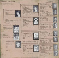 Family Pedigree Charts 12x12 by My Mind's Eye