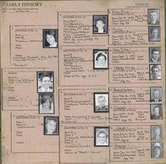 Family Pedigree Charts 12x12 by My Mind's Eye