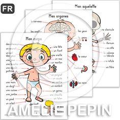 Fichiers PDF téléchargeables Langue: français En couleurs et en noir et blanc 5 pages par fichier Taille d'une page: 8,5 X 11 po. Contient 5 affiches: - Le corps humain - Agrandissement des yeux, de la bouche et d'une main - Le squelette - Les organes - Les muscles, les veines et les artères, les nerfs                                                                                                                                                                                 Plus