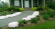 An informal gravel path is a simple and rustic solution to front yard landscaping an older cottage style home.