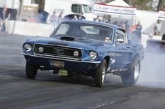 The Early Mustangs of the NMRA Spring Break Shootout Photo & Image Gallery 68 Ford Mustang, Ford Mustangs, Spring Break, Race Cars, Photo Galleries, Racing, Gallery, Classic, Drag Race Cars