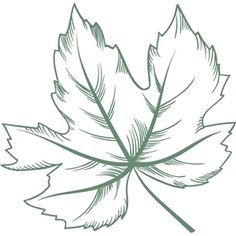 This design is intended to be cut with an electronic cutting machine. Paper Flowers Craft, Flower Crafts, Silhouette Design, Leaf Silhouette, Leaf Stencil, Stencils, Autumn Doodles, Stencil Printing, Leaf Drawing