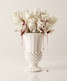 STUDY: BLOOD & ROSES, 2014 School Photography, Rose Photography, Still Life Photography, Artistic Photography, Photography Ideas, Dark Feeds, All The Colors, Floral Arrangements, Beautiful Flowers