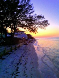 Anna Maria Island, FL oh to see the St. Augustine pines + gulf waters + sandy beach + sunset BLISS