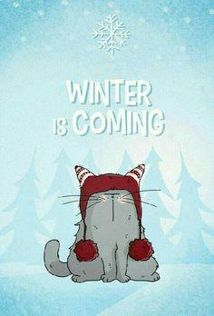 épinglé par ❃❀CM❁✿⊱Winter is Coming ! Illustration Mignonne, Illustration Noel, Illustrations, Crazy Cat Lady, Crazy Cats, Winter Cat, Gatos Cats, Photo Chat, All About Cats