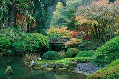 early morning in the Portland Japanese Garden... This garden is my healing space, I fall in love with it over and over every season that passes. Late summer early fall is my fave!