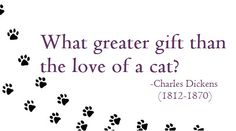 Charles Dickens on Cats #cat #quotes #cats #quote =^..^= www.zazzle.com/kittyprettygifts