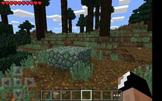 Found this is survival. Promise this is legit. Gonna mine the cobblestone soon. #firstday #myminecraft
