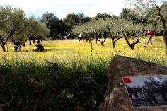 A l'occasion du week-end de Pâques, Garrigue en Fête vous emmène à la découverte des bêtes étranges qui peuplent la garrigue... Lire notre témoignage : http://www.sortie-famille-gard.com/garrigue-en-fete/