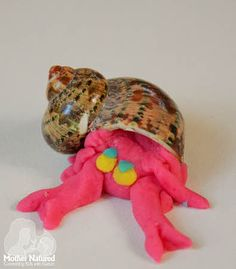 Great Activity for Sea Snails and Hermit Crabs in our Under the Sea Preschool theme OR shells and playdough? Under The Sea Crafts, Under The Sea Theme, Eyfs Activities, Nursery Activities, Sharing A Shell, Sea Snail, Ocean Themes, Sea And Ocean, Shell Crafts