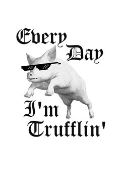 I don't know, I just thought of the pun one day while thinking of pigs, truffles, and music. Now I got a thug life pig. Pig Puns, Framed Prints, Canvas Prints, Art Prints, Thug Life, Pigs, Truffles, Laptop Sleeves, My Design