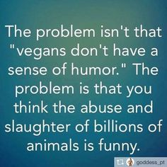 problem isn't that vegans don't have a sense of humor the problem is that you think the abuse and slaughter of billions of animals is funny reality check Vegan Memes, Vegan Quotes, Vegan Humor, Why Vegan, Vegan Animals, Reality Check, Animal Welfare, Vegan Lifestyle, Animal Rights