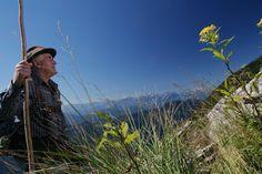 HIWU Austria, Places To Visit, Mountains, Nature, Travel, Summer Recipes, Naturaleza, Viajes, Trips