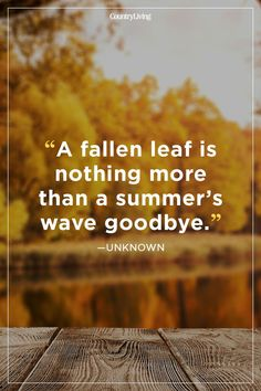 47 Fall Season Quotes - Best Sayings About Autumn quotes letterboard 52 Fall Quotes to Remind You Just How Beautiful This Season Is Live Quotes For Him, Life Quotes Love, Best Quotes, Best Sayings, Sayings About Family, Attitude Quotes, Country Living Quotes, Country Summer Quotes, Summer Sayings