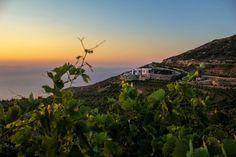 #sunset #sikinos #Sikinosisland #Greece #Island #vacation #oia #Santorini #folegandros #ios #summer #Aegean #Cyclades #weddingideas #decoration #Greecefood #Greecewine #winetourist #greecestagram #travel_greece #loves_greece #ig_greece #igers_greece #greecewine #winesofgreece #instagreece #wine #wines #wineo #vin #vins #vino #sommelier #winetasting #travel Mykonos, Oia Santorini, Paros, Greece Food, Greece Travel, Wine Tasting, Weddingideas, Islands, Greek