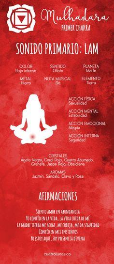Los chakras se podrían entender como centros energéticos de nuestro cuerpo que están relacionados con diferentes aspectos que van desde los más terrenales hasta los más celestes. Este sistema tiene…