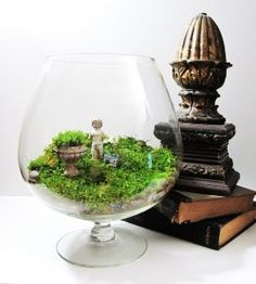 There is something about putting little statues and things in terrariums that I really like.