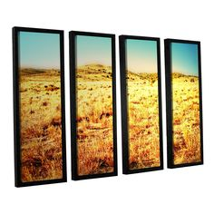 Take A Seat by Mark Ross 4 Piece Floater Framed Photographic Print on Canvas Set