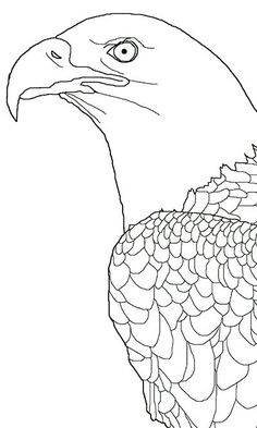 bald eagle coloring pages - - Yahoo Image Search Results Pyrography Patterns, Wood Carving Patterns, Wood Carving Art, Stencil Patterns, Stencil Art, Stencils, Free Printable Coloring Pages, Adult Coloring Pages, Printable Art