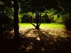 Atardecer de otoño en Achalay, tierra mojada
