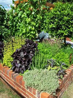 Brick instead of wood last longer, less maintenance or tumbled rock border? Like the variety of plants and falling over sides Bricks Used for Raised Garden Bed - Home and Garden Design Idea's Brick Garden, Veg Garden, Garden Fencing, Garden Boxes, Lawn And Garden, Garden Landscaping, Home And Garden, Building A Raised Garden, Raised Garden Beds