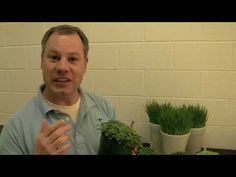Benjamin Carroll shows us how to grow microgreens and sprouts at home. It's a quick and easy way to get fresh healthy food even in winter!  We love being healthy <3