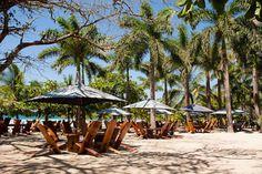 Lola's, Playa Avellanas: See 979 unbiased reviews of Lola's, rated 4.5 of 5 on TripAdvisor and ranked #1 of 5 restaurants in Playa Avellanas.
