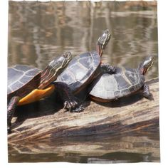 Pond Turtles Shower Curtain - shower gifts diy customize creative