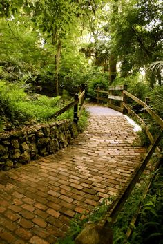 This One Easy Hike In Florida Will Lead You Someplace Unforgettable The trail at Rainbow Springs State Park in Dunnellon - Travel Orlando - Ideas of Travel Orlando Old Florida, Florida Keys, Orlando Florida, Hiking In Florida, Places In Florida, Florida Vacation, Florida Travel, Vacation Places, Vacation Spots