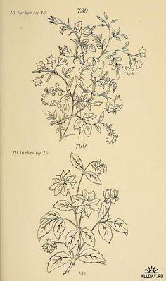 кейт гринуэй мотивы для росписи и вышивки 1880 г: 2 тыс изображений найдено в Яндекс.Картинках