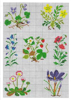 Flowers 123 Cross Stitch, Cross Stitch Borders, Simple Cross Stitch, Cross Stitch Flowers, Cross Stitch Designs, Cross Stitching, Cross Stitch Embroidery, Embroidery Patterns, Cross Stitch Patterns