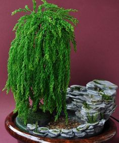 how to make a weeping willow miniature terrain tree wargaming - Google Search