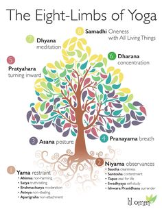 Poster about the Eight-Limbs of Yoga for Lil Omm Yoga