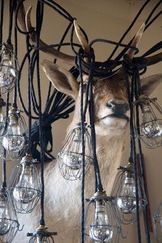 #chandelier, #industrial, #edisonbulbs