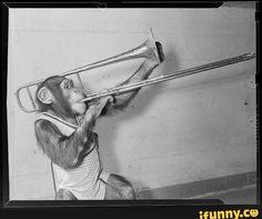 monkey on a trombone