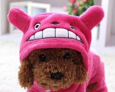New Fleece Pet Cat Dog Costume Soft Warm Dogs Clothes Cartoon Totoro Hoodie Coat Four Leg Jumpsuit Clothing for Small Pets 14 Cat Dog Costume, Dog Costumes, Pet Dogs, Dogs And Puppies, Pets, Doggies, Totoro, Chinese Dog, Dog Suit