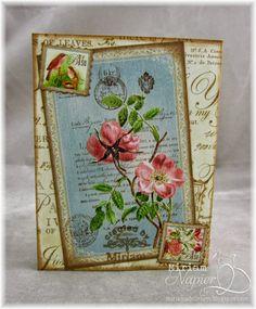 Miriam's Delirium. Graphic 45 Botanical Tea mini book back cover. 4 x 3.