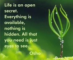 Life is an open secret. Everything is available, nothing is hidden. All that you need is just eyes to see ~ Osho