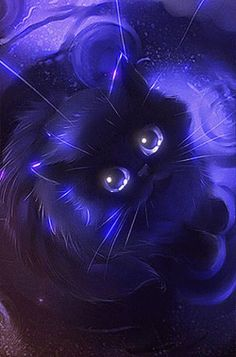 Schwarzer_Kater_Nacht - Best of Wallpapers for Andriod and ios Black Cat Art, Black Kitty, Cute Animal Drawings, Cat Wallpaper, Anime Animals, Warrior Cats, Cat Drawing, Sketch Drawing, Cute Baby Animals