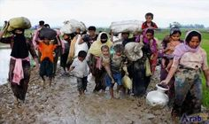 NU urges Myanmar to stop Rohingya massacre